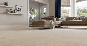 wow clean carpeting